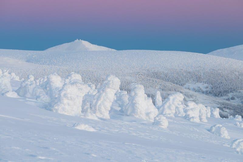 NationalparkKrkonose jätte- berg Denna är vägen till Stezkaen - det högsta berget av Tjeckien Solig vinterdag arkivbild