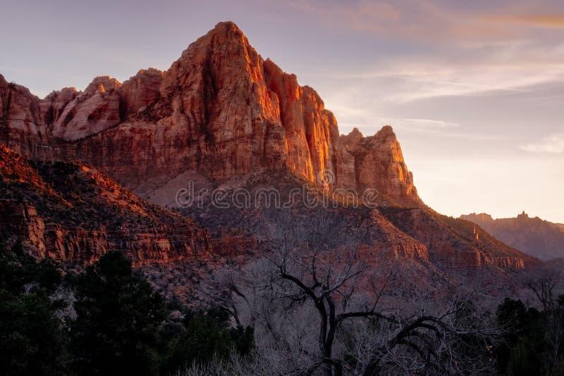 Nationalparksonnenunterganglandschaftsansicht Zion der Wächterspitze, Utah stockfotos