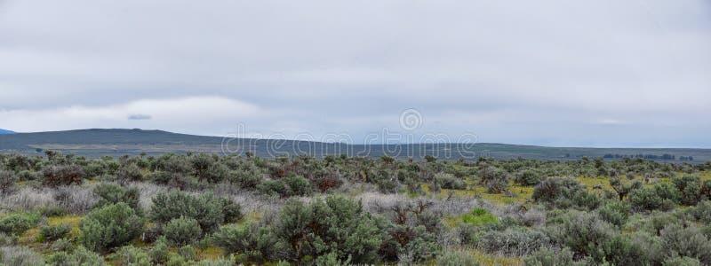 Nationell Forest Landscape för Sawtoothberg stormig panorama från södra hövdat till Sun Valley, sikt av lantligt betande land, Sa royaltyfri foto