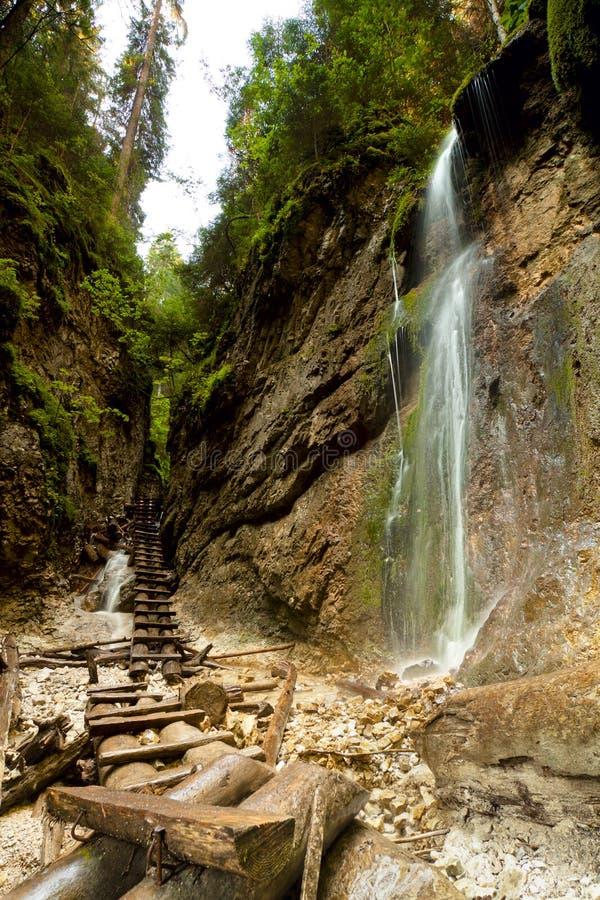 nationell paradisparkslovak slovakia arkivbilder