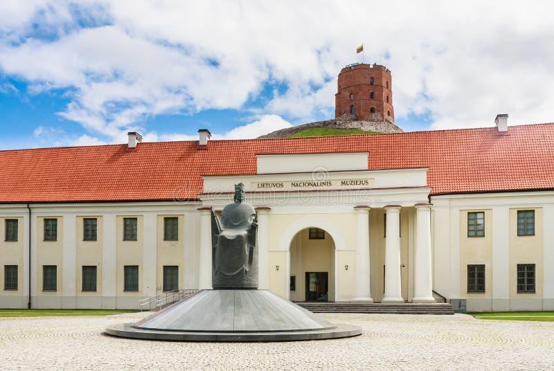 Nationellt museum av Litauen, monument som gör till kung Mindaugas och tornet av Gediminas, Vilnius royaltyfria foton