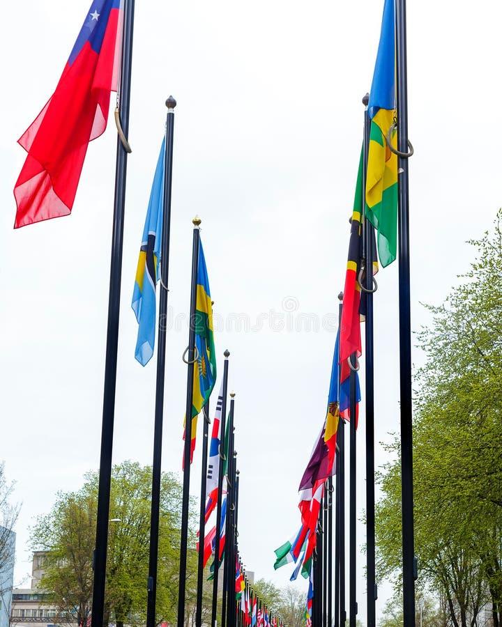 Nations-Fahrweggras vieler blüht unterschiedliches Flaggenstraße Europa-Mitgliedsverbandsgebäudeländer grüne Farbart Den Haag lizenzfreie stockbilder