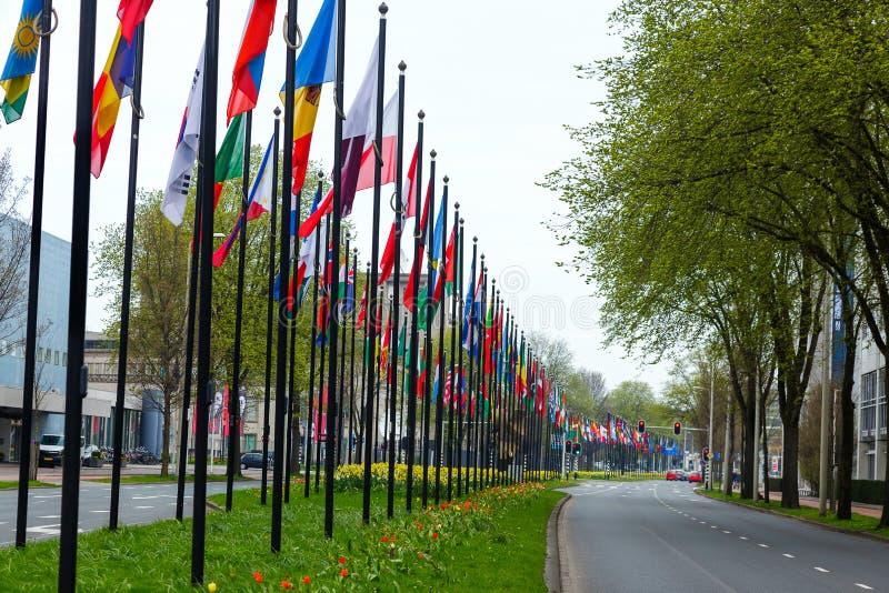Nations-Fahrweggras vieler blüht unterschiedliches Flaggenstraße Europa-Mitgliedsverbandsgebäudeländer grüne Farbart Den Haag stockbilder