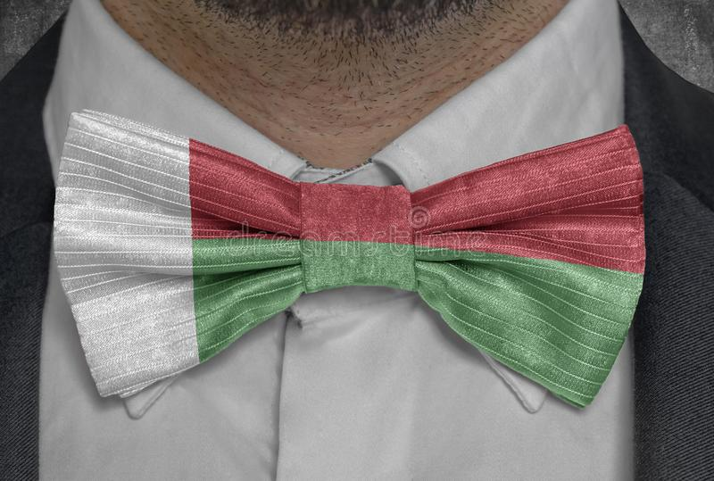 Nationsflagga av Madagascar på dräkt för bowtieaffärsman royaltyfri fotografi