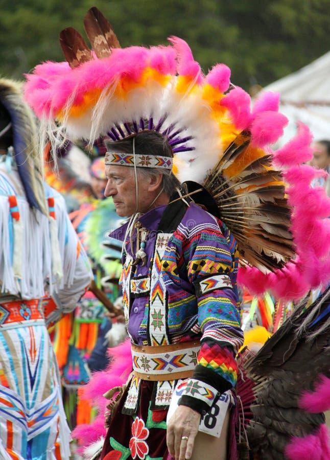Native American man royalty free stock image