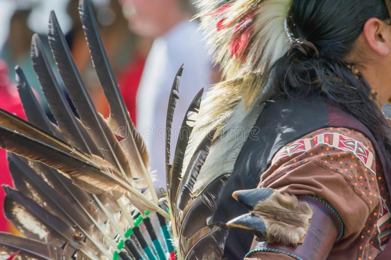 Native American Man. In traditional ceremonial attire at a Pow Wow royalty free stock images