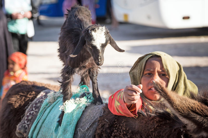 Download Native Arabic Woman Donkey And Goat Editorial Stock Photo - Image: 31011873