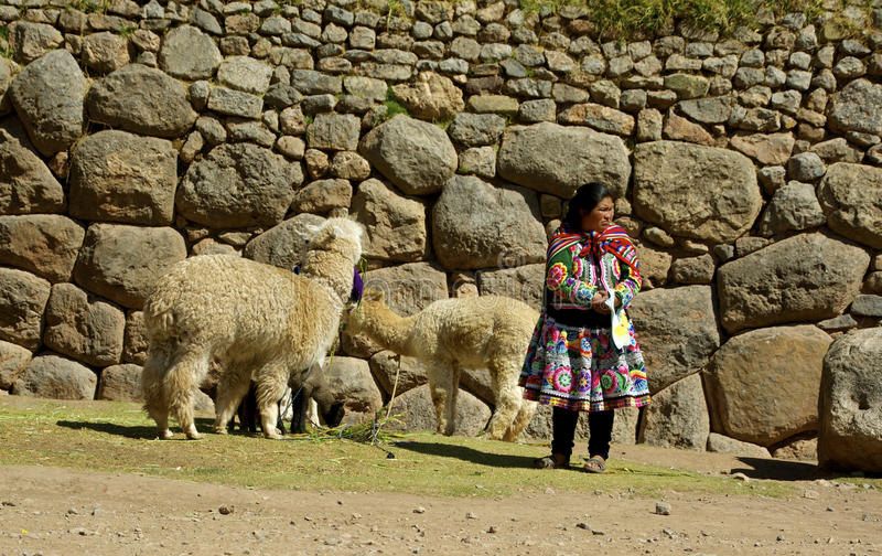 Download Native Woman From Peru With Lamas Editorial Image - Image of colourful, peruvian: 34276070