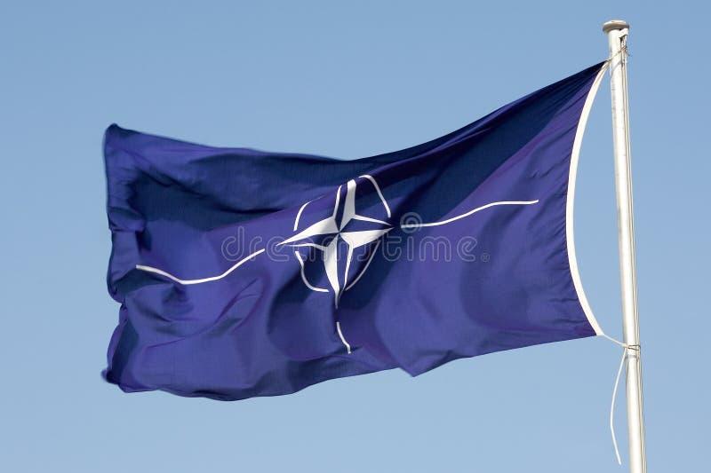 NATO-Flag royalty free stock photos