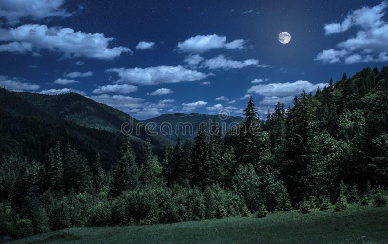 Natt över carpathian berg royaltyfri bild
