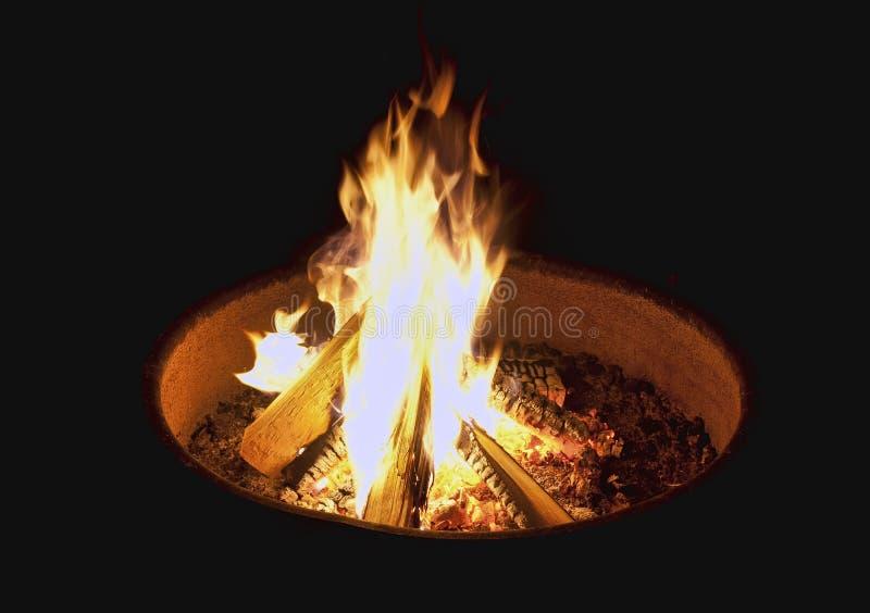 natt för småskogcampfireförbränning royaltyfri foto