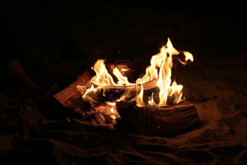 natt för småskogcampfireförbränning arkivfoto