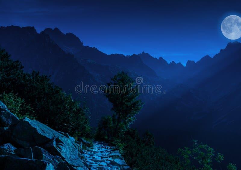 Natt i höga Tatras royaltyfri foto