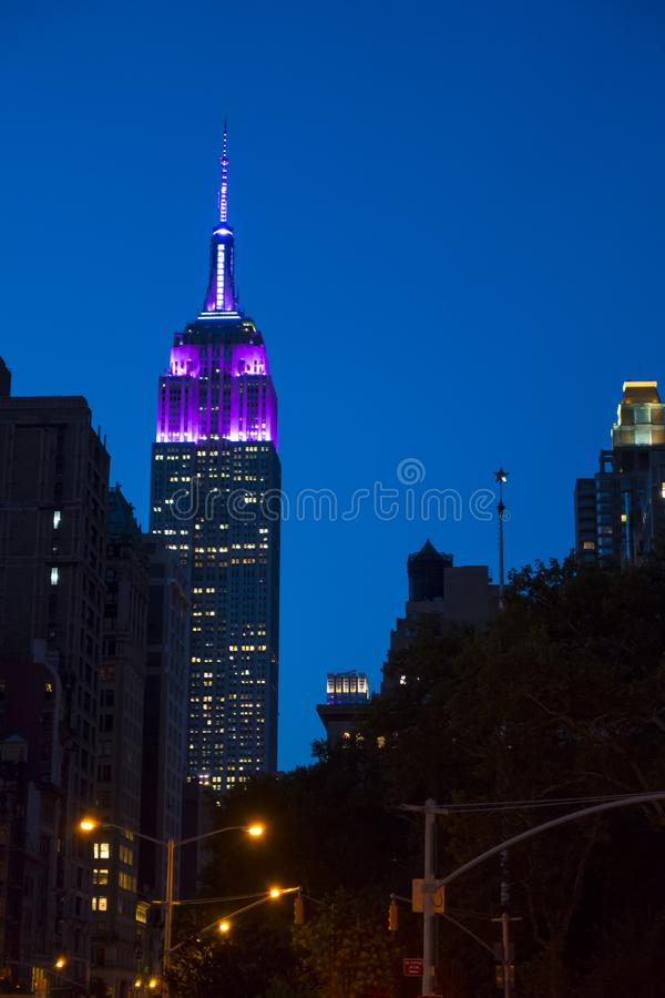 Natt i horisont för skymning för metropolismidtownNew York City byggnad arkivbild