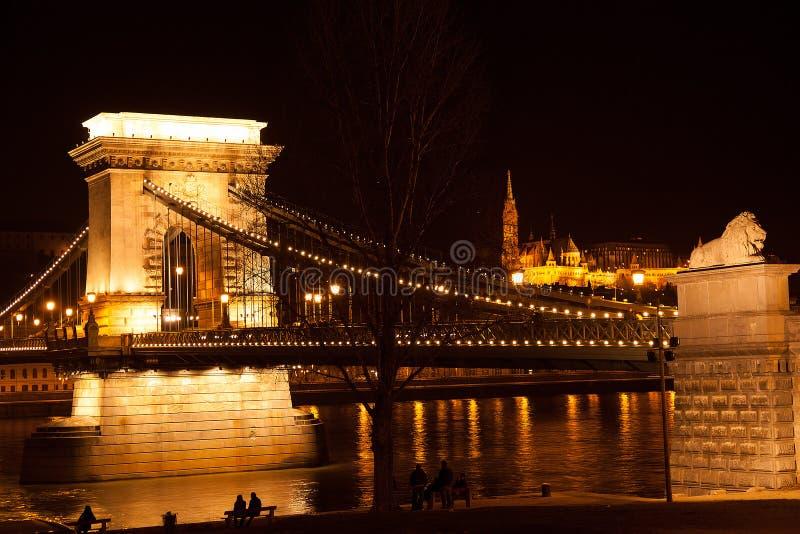 Nattbro i Budapest royaltyfri foto