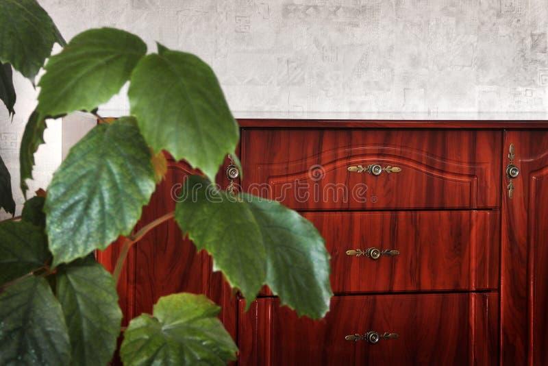 Nattduksbord i huset Växt i förgrunden royaltyfria foton