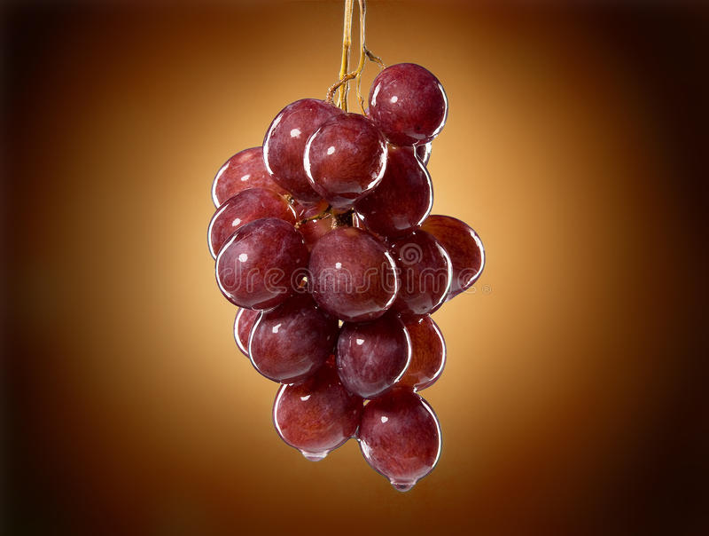 Natte druiven royalty-vrije stock afbeeldingen