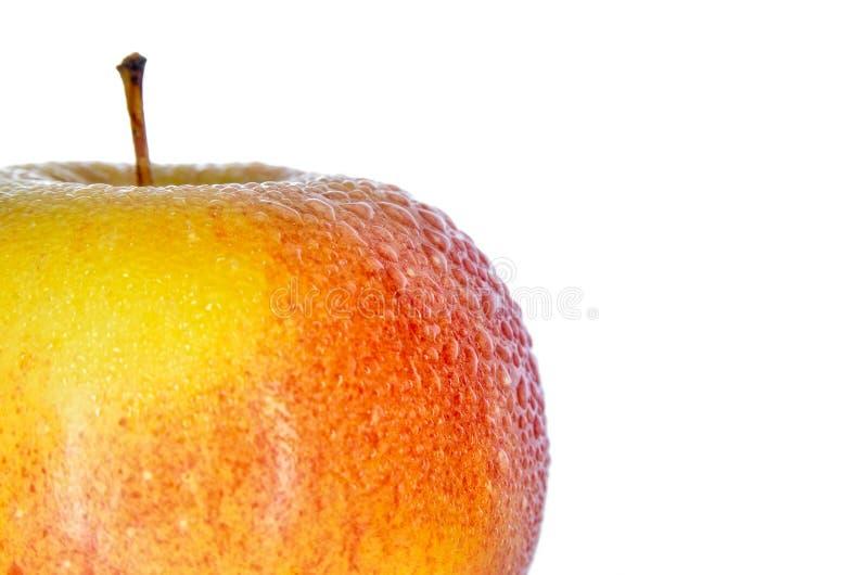 Natte, rijpe die appelen op een witte achtergrond worden geïsoleerd royalty-vrije stock foto