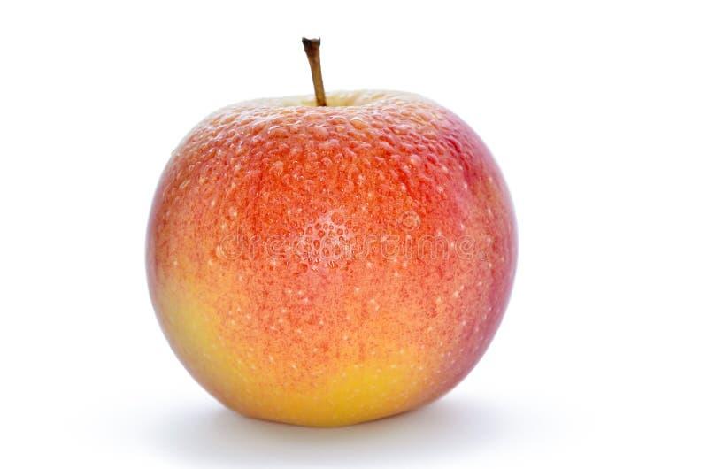 Natte, rijpe die appelen op een witte achtergrond worden geïsoleerd stock foto's