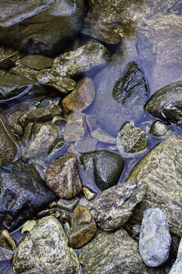 Natte rotsen in de stroom. royalty-vrije stock fotografie