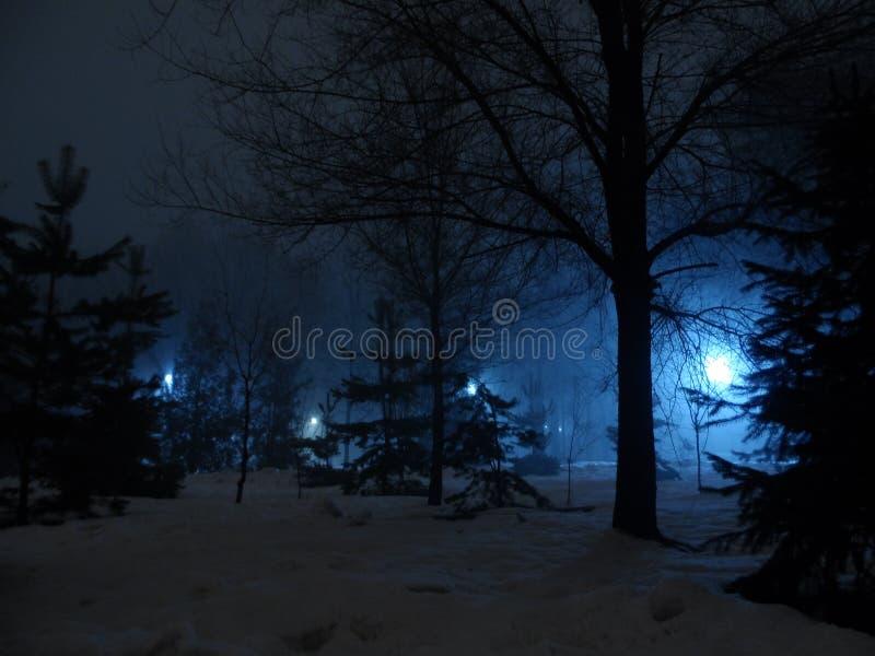 Natten parkerar i almaty fotografering för bildbyråer