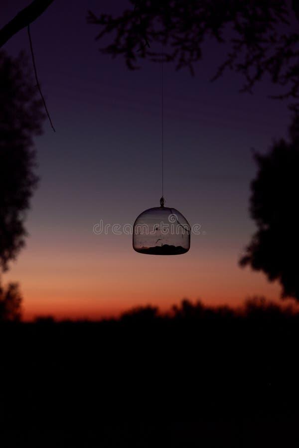 Nattficklampa arkivfoto