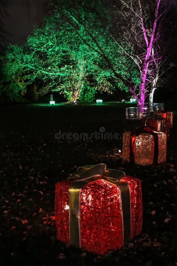 Nattgarneringar på jul i kungliga Kew trädgårdar, London fotografering för bildbyråer