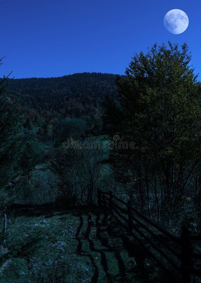 Natthöstlandskap royaltyfri foto
