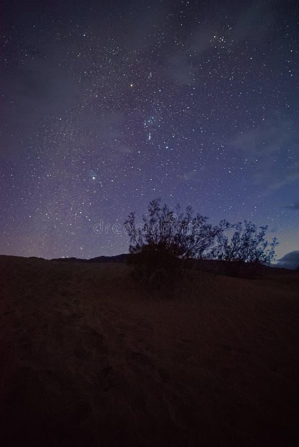 Natthimlar på Joshua Tree, Death Valley och lilla Tujunga arkivfoton