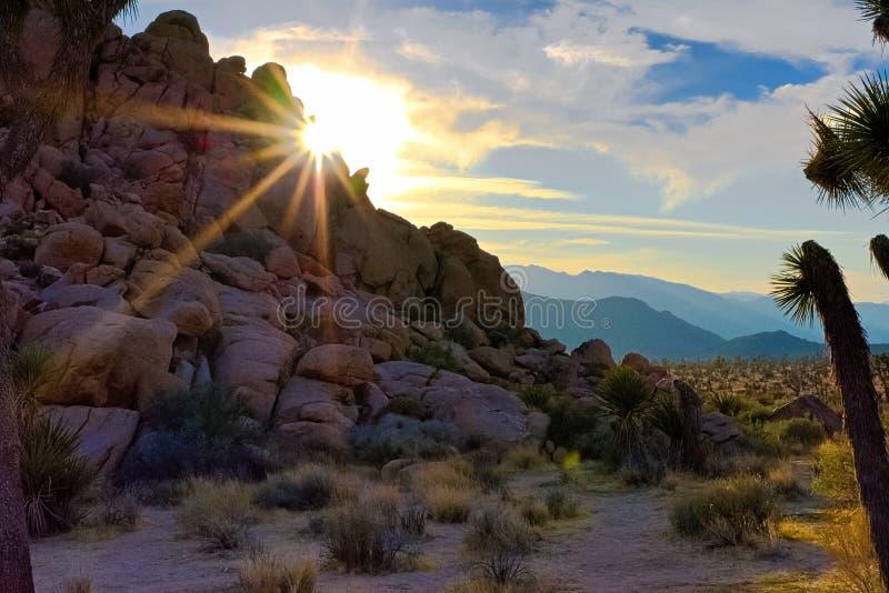 Natthimlar på Joshua Tree, Death Valley och lilla Tujunga royaltyfria foton