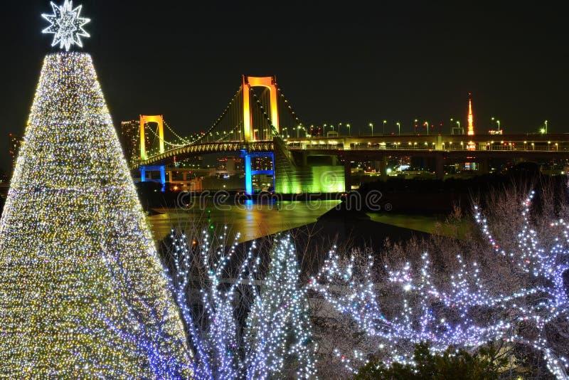 Nattlandskap av Tokyo, Japan under jul royaltyfria bilder