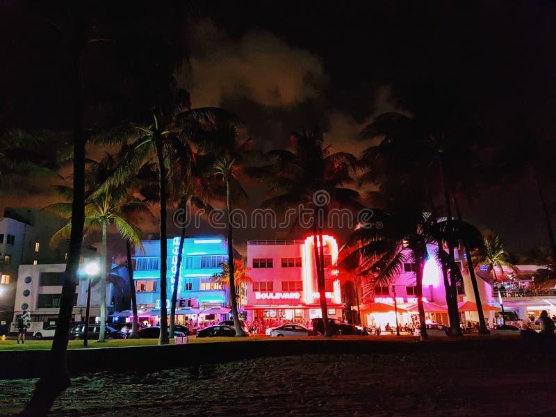 Nattljus i den södra stranden, Miami royaltyfri foto