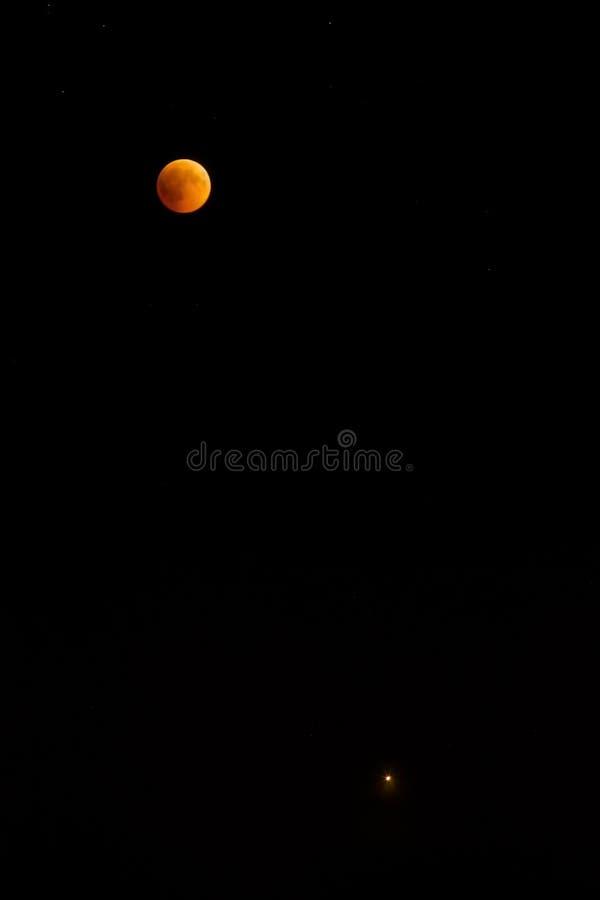 Nattmånförmörkelse på en mörk himmel royaltyfri fotografi