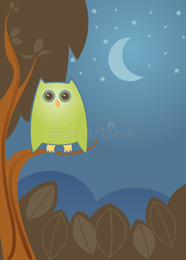 nattowl stock illustrationer