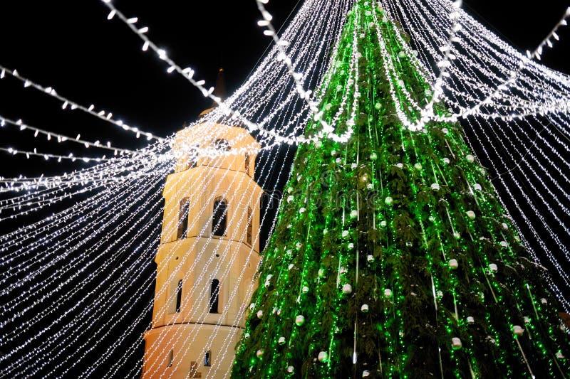 Nattsikt av julträdet i Vilnius, Litauen Fira Xmas-ferier i baltiska stater royaltyfria foton