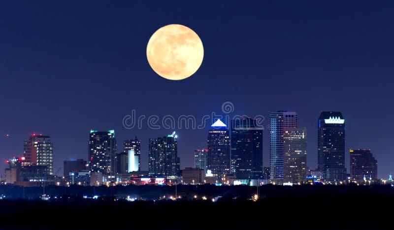 Nattsikt av Tampa Florida horisont med den enorma fullmånen i himlen arkivfoto
