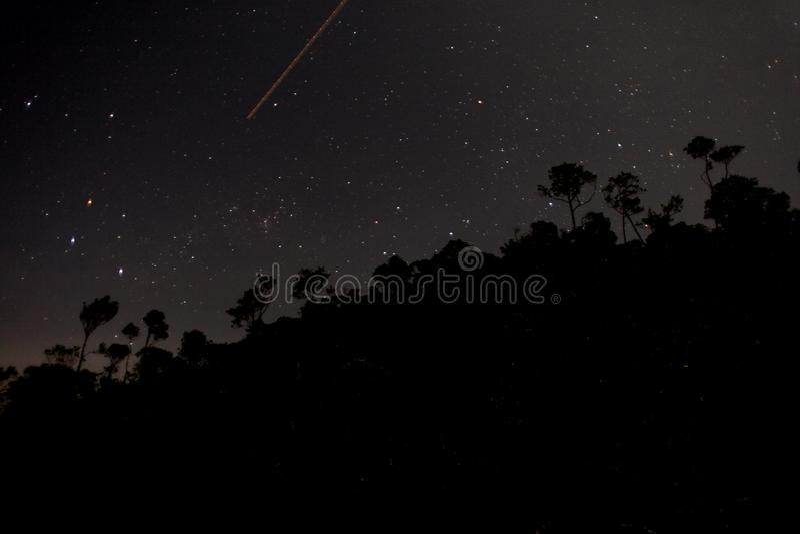 Nattskyttestjärna arkivfoto