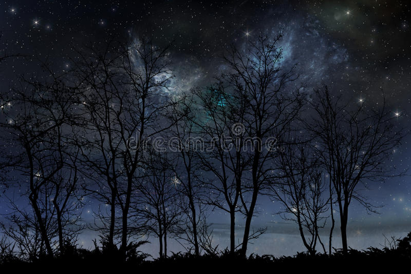 Nattstjärnahimmel arkivbilder