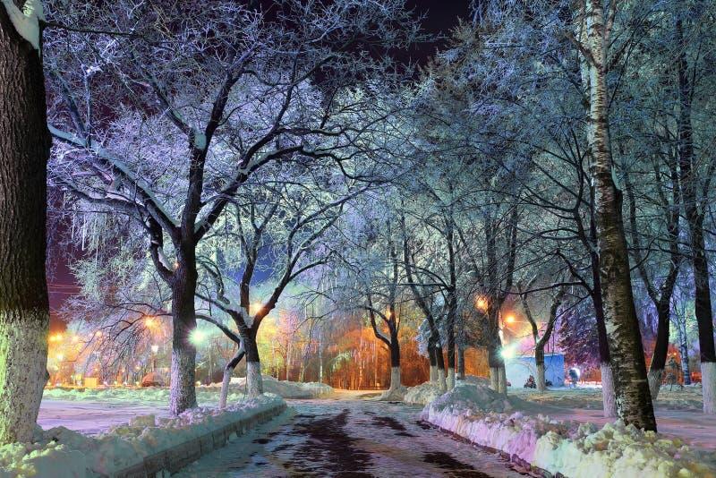 Nattvinterlandskap i den lilla staden royaltyfria foton