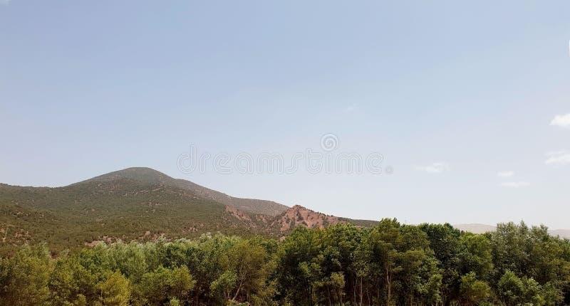 Natur av berget royaltyfria foton