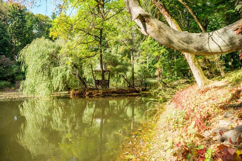 Natur av Europa Ukraina arkivfoto