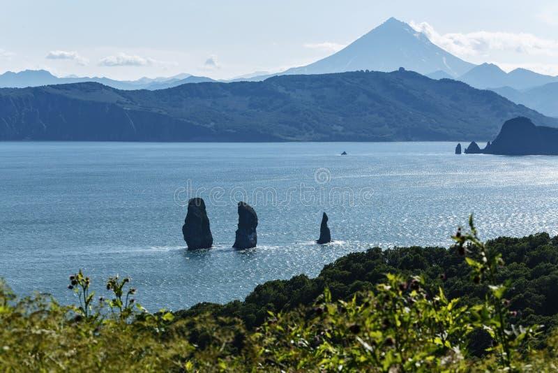 Natur av Kamchatka - sikten av fjärden, vaggar och vulkan royaltyfria bilder