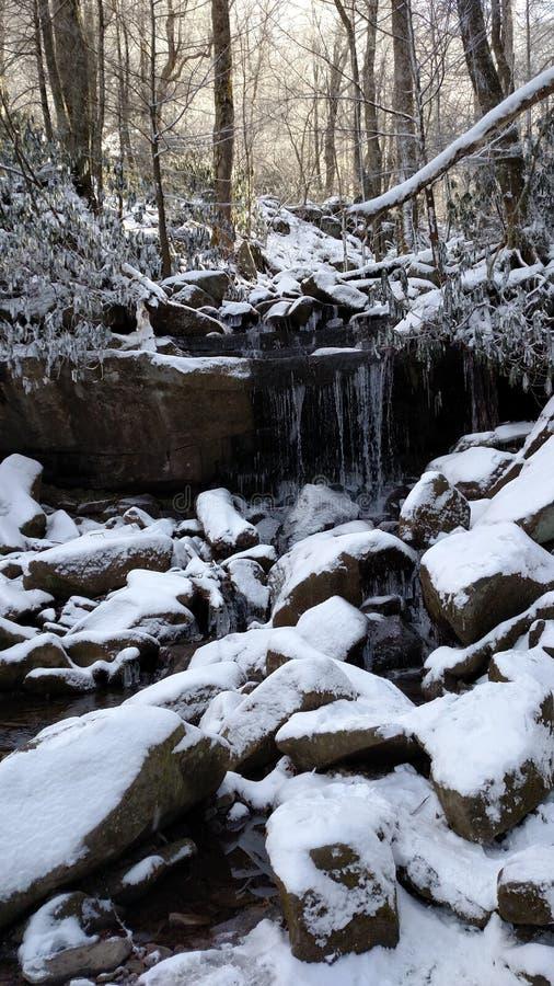 Natur av Tennessee royaltyfri foto