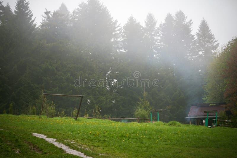 Natur Carpathians i regnet arkivfoton