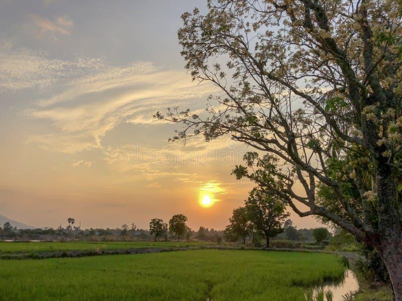 Natur in der Landschaft lizenzfreies stockfoto