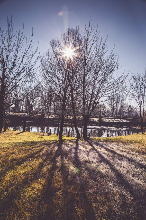Natur in der Winterzeit, dem See und der Laube lizenzfreie stockfotos