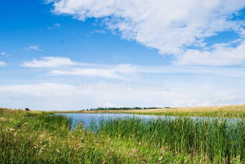 Natur e rio imagem de stock royalty free