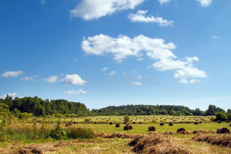 natur för sammansättningsfälthöstack panorama- royaltyfria foton