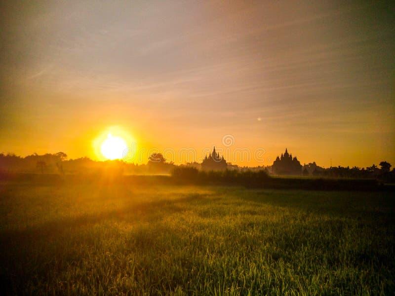 natur för solnedgång för naturtempelsilhouet plaosan royaltyfria bilder