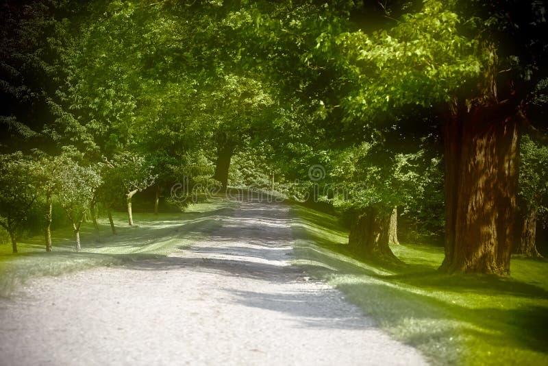 Natur (73, Farbe) stockbild